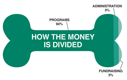 How the Money is Divided