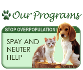 Spay and Neuter Assistance